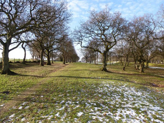 The Roman Military Way, Seabegs Wood